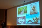 Aquatic Croc Diversity